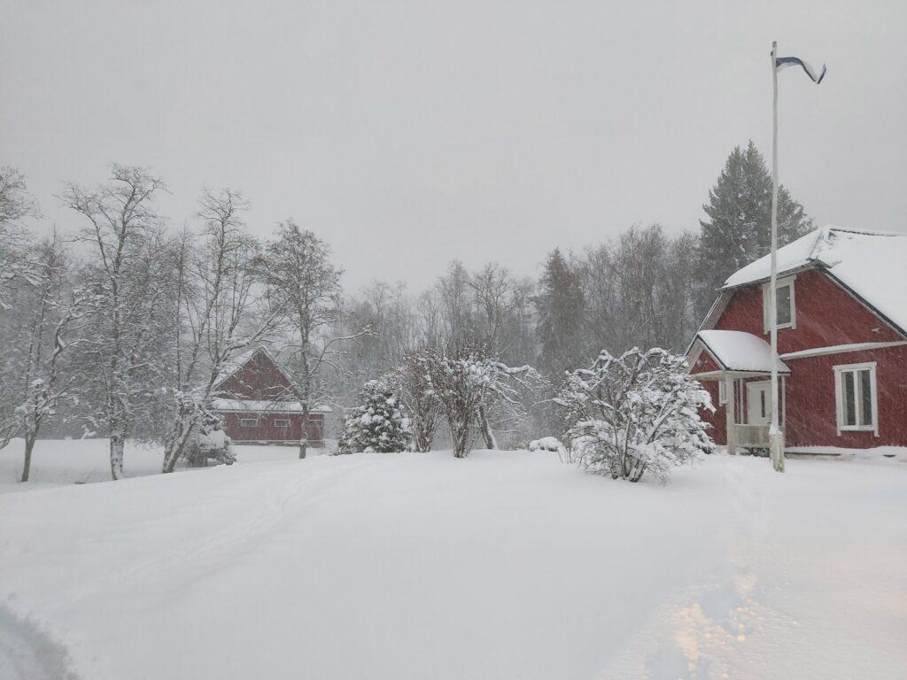 Meie kodu esimene talv